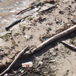 Pollutants on shore