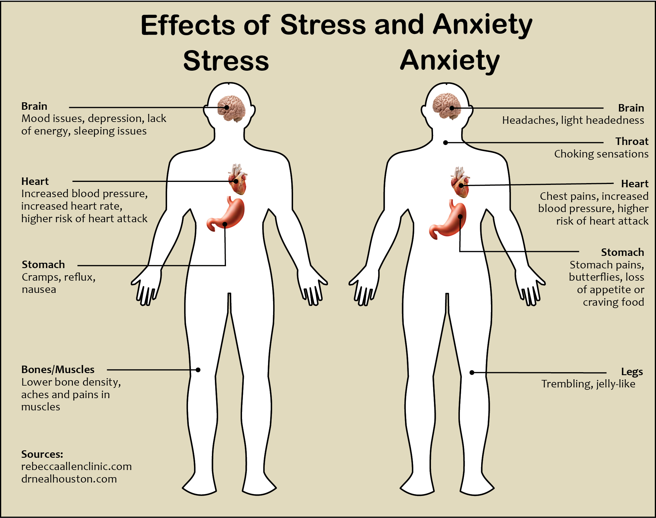 a description of the cause and effect of stress to an individual Unclear work or conflicting roles and boundaries can cause stress,as can having responsibility for peoplethe possibilities  individual stress management.